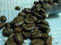 carmona_beans